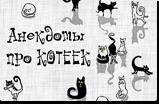 <br /> Информер с анекдотами про кошек и котов